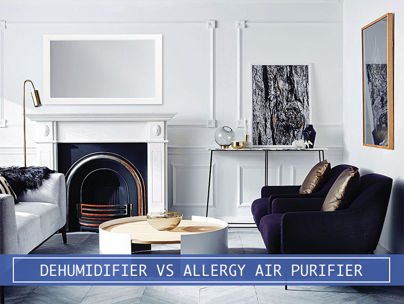 large room with dehumidifier and allergy air purifier