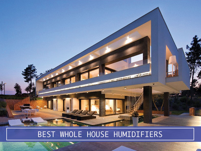 external house whole house dehumidifiers