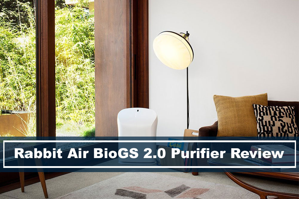 Rabbit Air BioGS 2.0 HEPA Air Purifier In Living Room